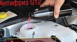 Antifreeze G12, le sue caratteristiche e la differenza dall'antigelo di altre classi