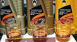 Aceite de Rosneft: ¿qué hay en las latas?