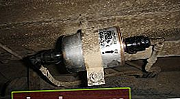 Filtro de combustible Lada Priora