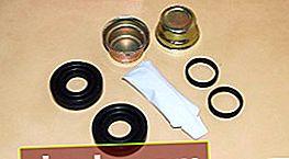 Kit di riparazione pinza freno. Composizione del kit, applicazione, produttori