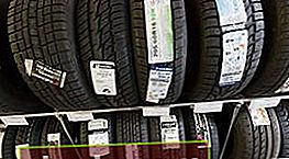 ¿Qué neumáticos es mejor elegir?