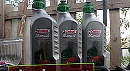 Controllo e cambio olio nella scatola Aveo New