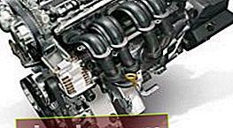 Sostituzione della cinghia di distribuzione nel motore Duratec Ti-VCT 1.6 16V Ford Focus 2