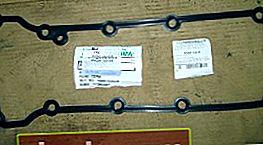 Sostituzione della guarnizione del coperchio della valvola e riparazione del tendicatena idraulico Ford Focus 1