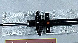 Ammortizzatori Renault Duster 4x4