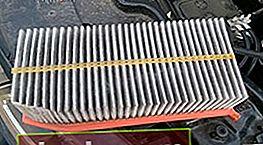 Filtro dell'aria per Renault Duster